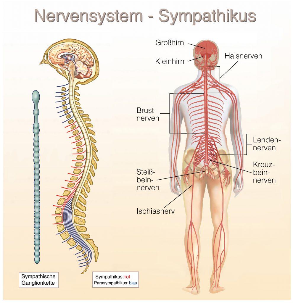 Gelenkarthrose und Rheuma Behandlung mit integrative Schmerztherapie ...